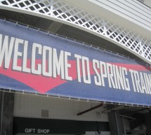 Minnesota Twins: 2013 Spring Training Preview Guide
